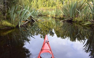 Glacier Country Kayaks – Why we love Autumn on the West Coast!
